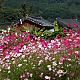 http://www.tokyosaram.jp/data/file/fun/thumb-2123959235_hI85nNmA_02cae05e5cb4542d2dc4d67e3eb66d235eacb7bb_80x80.png
